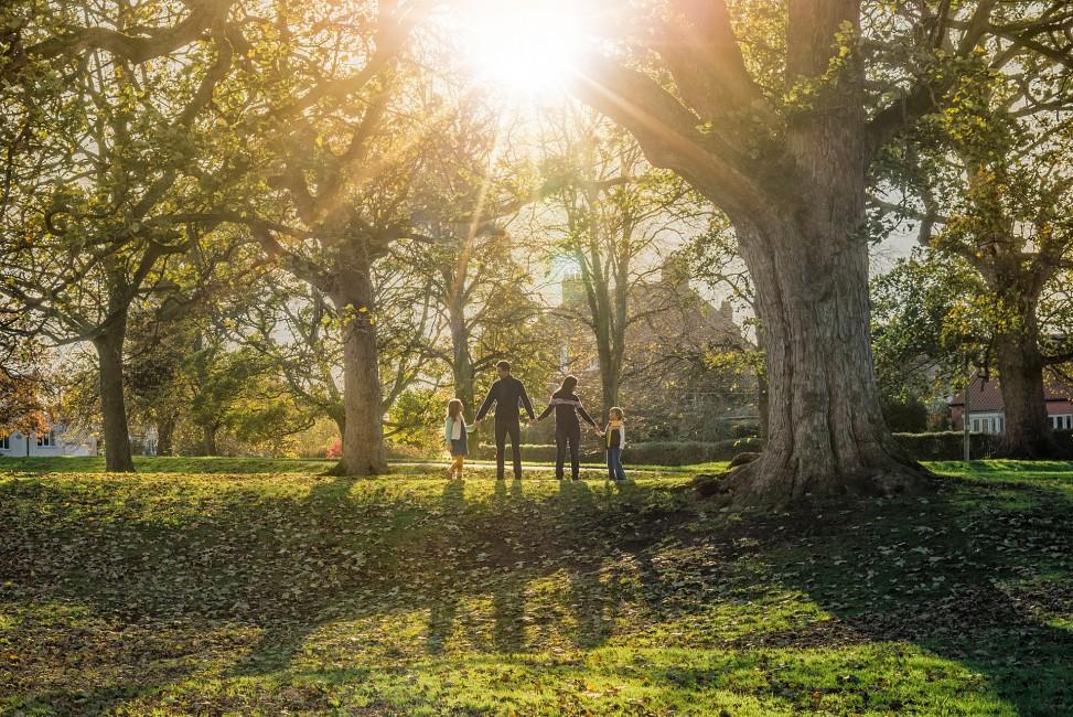 057.JPG Family Photography Shoot Autumn sunshine